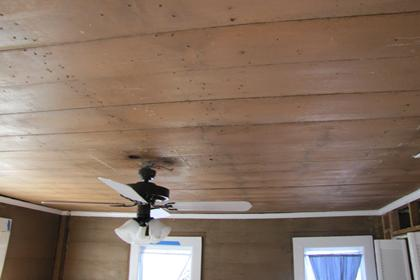 Ceiling Fan and Light Fixture in Upstairs South Be