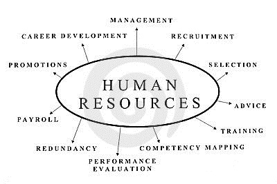 Human Resources - Term Paper