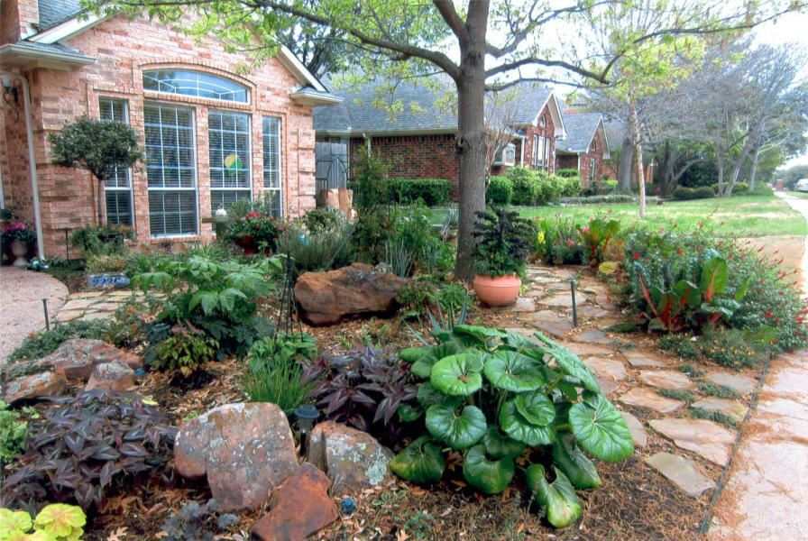 Xeriscape desoto tx official website for Garden design xeriscape